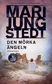 Cover for Den mörka ängeln
