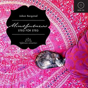 Cover for Mindfulness steg för steg