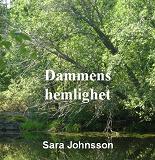 Cover for Dammens hemlighet