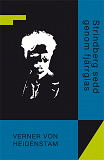 Cover for Strindberg sedd genom fjärrglas