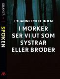 Cover for I mörker ser vi ut som systrar eller bröder: en e-singel ur Granta #4