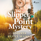 Cover for The Slipper-point Mystery