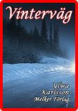Cover for Vinterväg