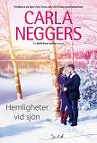 Cover for Hemligheter vid sjön