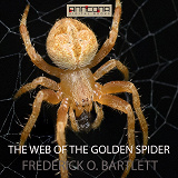 Cover for The Web of the Golden Spider