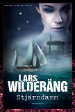 Cover for Stjärndamm