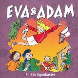 Cover for Första ögonkastet