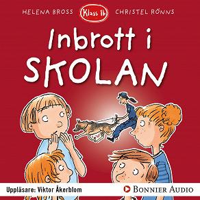 Cover for Inbrott i skolan