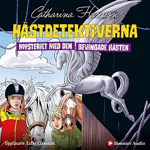 Cover for Hästdetektiverna. Mysteriet med den bevingade hästen