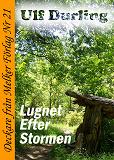 Cover for Lugnet efter stormen