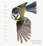 Cover for Nära fåglar