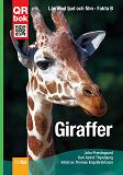 Cover for Giraffer - Fakta A