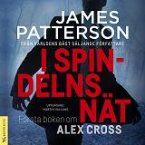 Cover for I spindelns nät