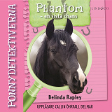 Cover for Ponnydetektiverna. Phantom - en sista chans