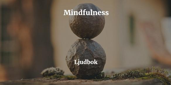 Cover for Mindfulness Meditation – Meditera bort din stress