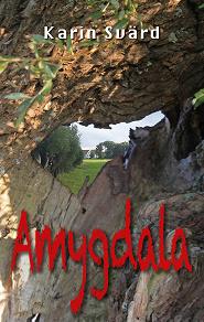 Cover for Amygdala