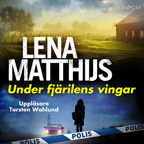 Cover for Under fjärilens vingar