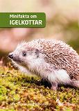 Cover for Minifakta om igelkottar