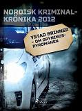 Cover for Ystad brinner – om Gryningspyromanen