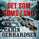 Cover for Det som göms i snö