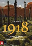 Cover for Stridens skönhet och sorg 1918 : Första världskrigets sista år i 88 korta kapitel