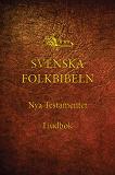 Cover for Nya testamentet (Svenska Folkbibeln 15), Ljudbok med bakgrundsmusik