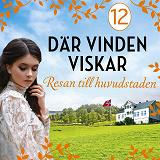 Cover for Resan till huvudstaden: En släkthistoria