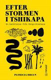 Cover for Efter stormen i Tshikapa