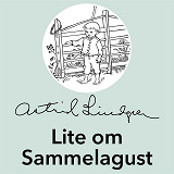 Cover for Lite om Sammelagust