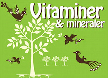 Cover for Hälsoserien : Vitaminer och mineraler (PDF)