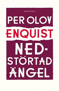 Cover for Nedstörtad ängel