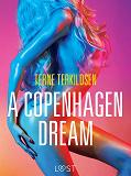 Cover for A Copenhagen Dream - erotic short story