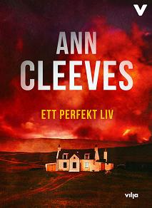 Cover for Ett perfekt liv