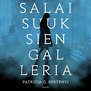 Cover for Salaisuuksien galleria