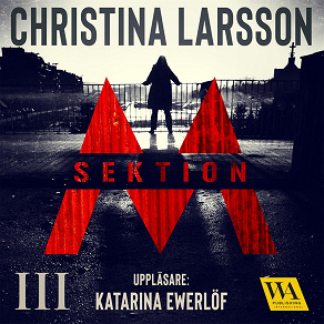 Cover for Sektion M III