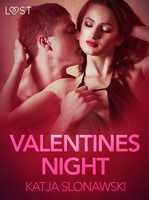 Cover for Valentine's Night - Erotic Short Story