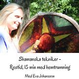 Cover for Shamanska tekniker del 6