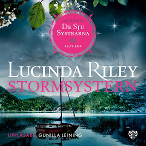 Cover for Stormsystern: Allys bok