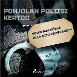 Cover for Voiko Malmössä olla aito Rembrandt?