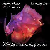 Cover for Kroppsscanning Mini. Thetautgåva