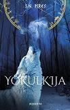 Cover for Yökulkija