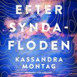 Cover for Efter syndafloden