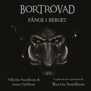 Cover for Fånge i berget