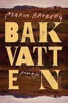 Cover for Bakvatten
