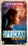 Cover for Sprickan : drömmen om Europa