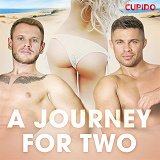 Cover for A Journey for Two