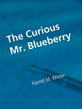 Cover for The Curious Mr. Blueberry