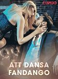 Cover for Att dansa fandango