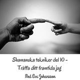 Cover for Shamanska tekniker del 10