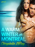 Cover for A Warm Winter in Montreal – Erotic Short Story